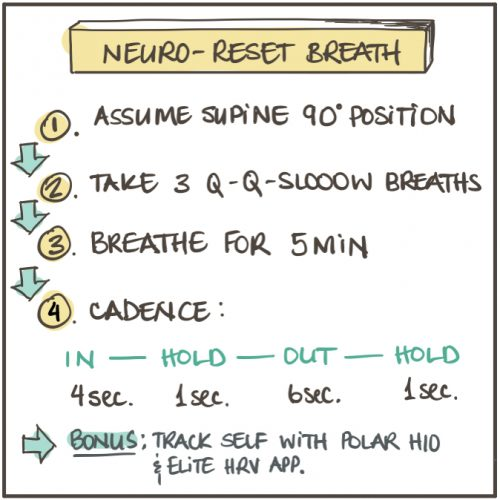 Neuro-Reset Breath TLA Pocket Buddy